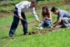 4年花千万修复20亩土地,探访浙江首例土壤污染修复项目