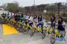 """ofo""""小黄车""""进入印度7个城市开展试点"""