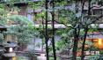 涨了!春节假期河北旅游总收入111.5亿元