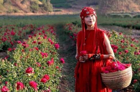 杨丽萍仍美如仙子