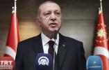 巴尔干土裔人要暗杀土总统?土情报部门:正核查
