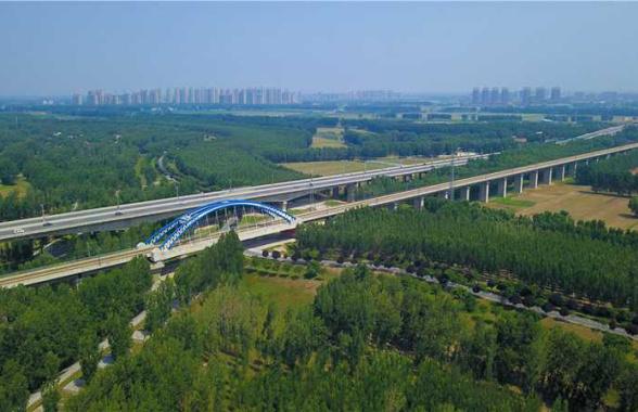黄河滩区国有原阳林场:省会郑州的绿色屏障