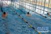 游泳池水质咋样?漯河两家游泳馆被强制叫停