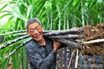 香河:建档立卡贫困户与企业签订分红协议