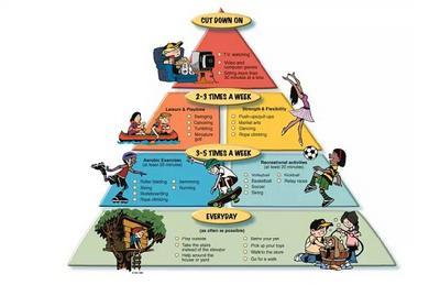 美国1970年哈佛食物金字塔