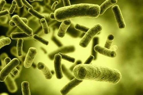 真菌感染皮肤病的症状 日常护理小常识