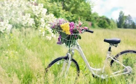 怎样 单车 共享/然而,最近笔者发现共享单车出事了?