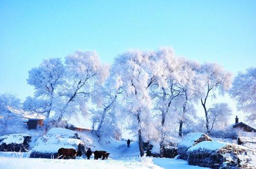 别有风情 国内冬季旅游必去的10大美景