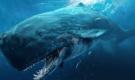 盘点地球史上十大巨型怪物 你的旅行惊悚了吗?
