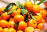"""义乌一七岁男孩成了""""小黄人"""" 只因特爱吃橘子"""