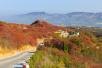 鞏義長壽山,小景區,深秋色。