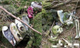 难再出来的迷宫:日本恐怖的吃人森林
