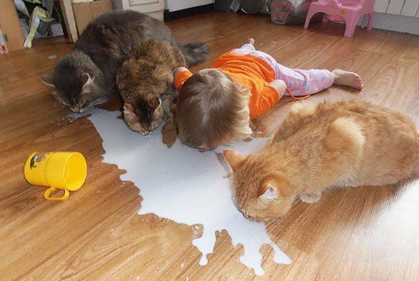 孩子加宠物等于蒙圈了