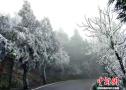 南岳衡山景区迎今冬首场雾凇 美景宛如幻境