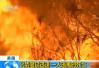 美加州野火不断 2.7万居民撤离数百建筑遭破坏