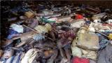 卢旺达再次宣称法国涉入卢旺达大屠杀