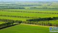 中央财政投入280多亿元 支持高标准农田建设