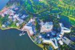 海南自贸区成立刚两周 阿里巴巴就成首家战略合作企业