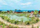 洛阳吉利区:生态公园 美景如画