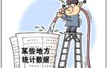 人大常委会委员:某县落选百强 第1个处理统计局长