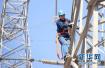 高温高湿天气致用电负荷持续攀升 山东今日启动有序用电