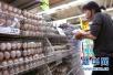 9月中旬鲜鸡蛋价格反弹 猪肉价格稳中有降