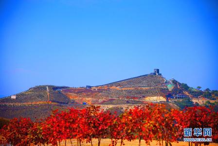 河北涉县:庄子岭遍山红叶迎游客