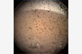 火星天气开报 原来火星不烫?具体什么情况