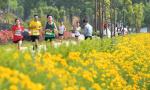 马拉松——激情跑马助力乡村振兴