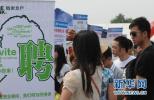 沧州出台实施方案全力稳就业