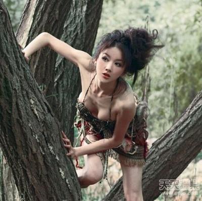 [视频]森林里的魅影 西藏野人图片