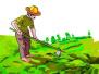 ?#26412;?#39318;个农村土地经营权抵押融资项目落地