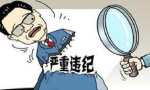 盘锦市人大常委会原秘书长盖林因严重违纪被双开