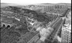 大连市内四区今年各建一山体公园 看看你家门口有没有