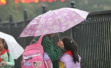 杭州一小学校长提议雨天不接送,600余家长接短信2人回复