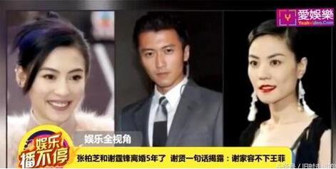 谢霆锋打算再婚遭全家反对 父亲谢贤:绝对不同意娶王菲!