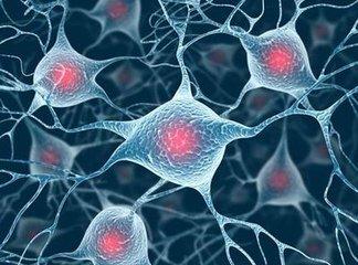 科学家发现眼部存在免疫细胞 视网膜病变有望得到治疗
