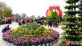 开封菊花文化节开幕后的首个周末:菊香人潮涌