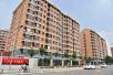 重磅!北京1000公顷集体土地将建租赁房,租期3至10年