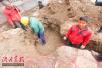 """河南一寺庙施工挖出2吨重""""石龟"""" 表情有点萌"""
