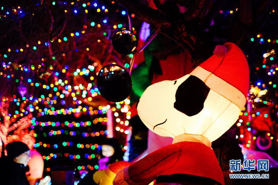 """纽约布鲁克林""""圣诞小镇"""""""