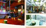 青岛市南区:红瓦绿树咖啡香 创意时尚名俱扬