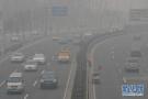 强浓雾来袭!山东省气象台发布大雾橙色预警信号!