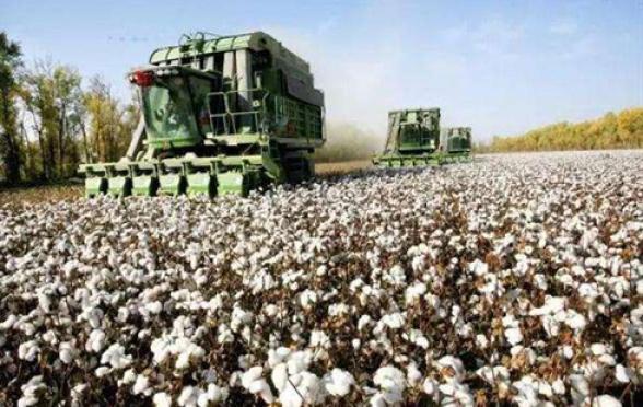 2018年棉花市场基本面进一步转好