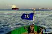 莱州湾海冰来袭渔民出海热情不减 他们捕的是这种鱼