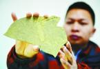 厉害了!南京专家发现神奇藻类化石
