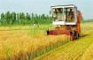 2020年,山东完成改革的涉农村成立新型集体经济组织