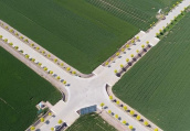 河南许昌:高标准粮田小麦丰收在望