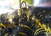 郑州又现共享单车