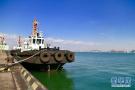 走进国投曹妃甸港口 感受绿色大港的碧海蓝天